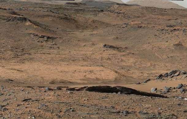 бактерии на марсе
