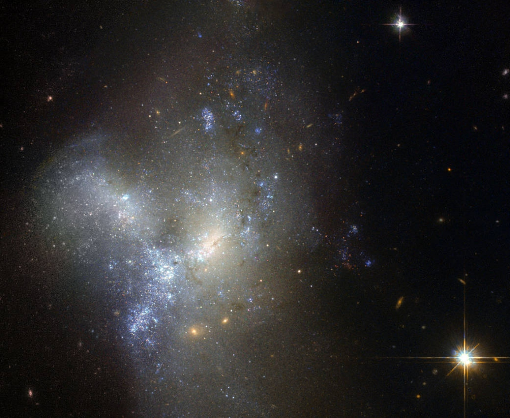 This image, taken by the NASA/ESA Hubble Space Telescope, shows a peculiar galaxy known as NGC 1487, lying about 30 million light-years away in the southern constellation of Eridanus. Rather than viewing a celestial object, it is actually better to think of this as an event. Here, we are witnessing two or more galaxies in the act of merging together to form a single new galaxy. Each progenitor has lost almost all traces of its original appearance, as stars and gas have been thrown hither and thither by gravity in an elaborate cosmic whirl. Unless one is very much bigger than the other, galaxies are always disrupted by the violence of the merging process. As a result, it is very difficult to determine precisely what the original galaxies looked like and, indeed, how many of them there were. In this case, it is possible that we are seeing the merger of several dwarf galaxies that were previously clumped together in a small group. Although older yellow and red stars can be seen in the outer regions of the new galaxy, its appearance is dominated by large areas of bright blue stars, illuminating the patches of gas that gave them life. This burst of star formation may well have been triggered by the merger.