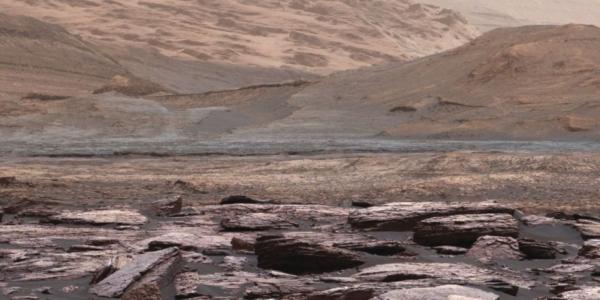 Это еще не инопланетяне - утверждение Mars Bug может испортить все наработки по внеземной жизни
